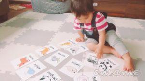【1・2歳バイリンガル育児】自宅でも簡単に英語教育ができる!娘が動物の名前を英語と日本語で覚えた方法
